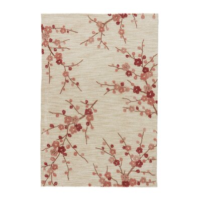 Anselmo Hand-Tufted Colorado Area Rug Rug Size: Rectangle 76 x 96