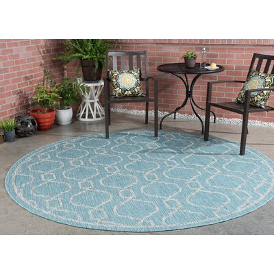 Ford Transitional Aqua Indoor/Outdoor Area Rug Rug Size: 53 x 73