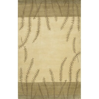Jamaris Beige/Brown Area Rug Rug Size: Rectangle 5 x 8