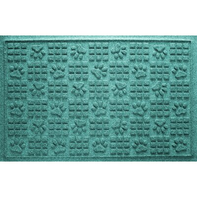 Conway Doormat Color: Aquamarine