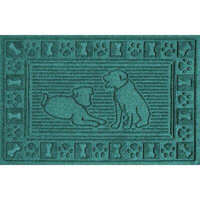 Conway Doormat Color: Aquamarine