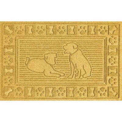 Conway Doormat Color: Yellow