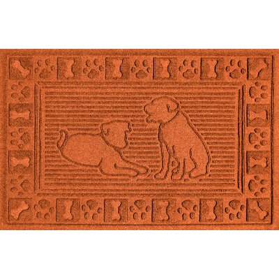 Conway Doormat Color: Orange
