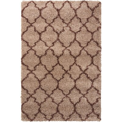 Linton Latte Area Rug Rug Size: Rectangle 53 x 75