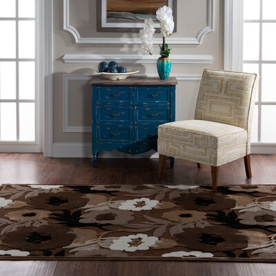 Cashion Floral Brown Area Rug Rug Size: Rectangle 5 x 76