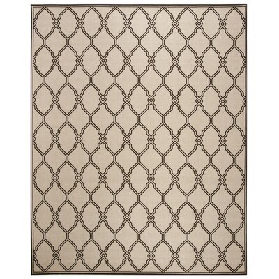 Miesha Contemporary Natural Area Rug Rug Size: Rectangle 51 x 76