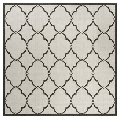 Miesha Light Gray Area Rug Rug Size: Square 67