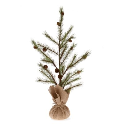 "Potted Pine Tree Home Accent Size: 27"" H X 15"" W X 15"" D"