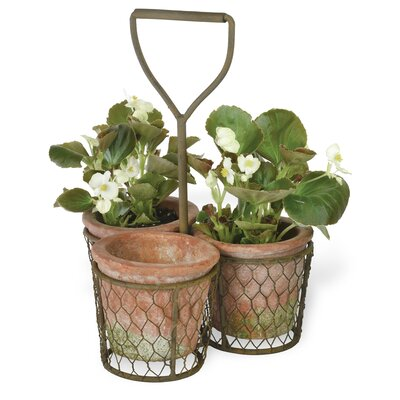 3-Piece Terracotta Pot Planter Set