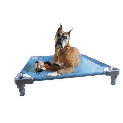 Elevated Dog Cot Size: Large - 34 L x 34 W