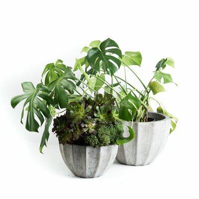 2 Piece Nau Round Pot Planter Set