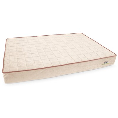 Blissful Breeze Dog Bed Size: 48 L x 32 W, Color: Champagne