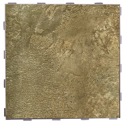 Classic ThinLine 12 x 12 Porcelain Field Tile in Niobrara