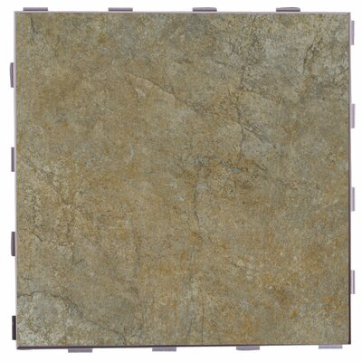 Classic ThinLine 12 x 12 Porcelain Field Tile in Paxton