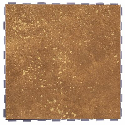Classic Standard 12 x 12 Porcelain Field Tile in Rosso