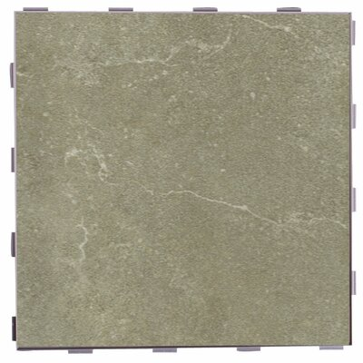 Classic ThinLine 12 x 12 Porcelain Field Tile in Endicott