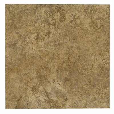 12 x 12 Porcelain Field Tile in Moravia