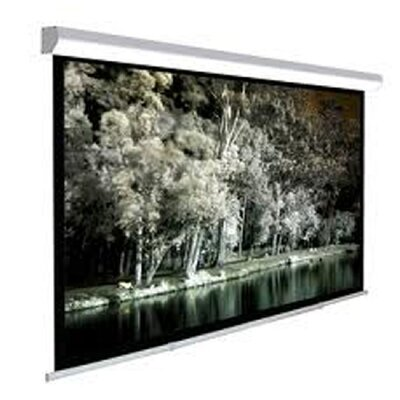 TygerClaw White Manual Projection Screen Size: 108 H x 108 W