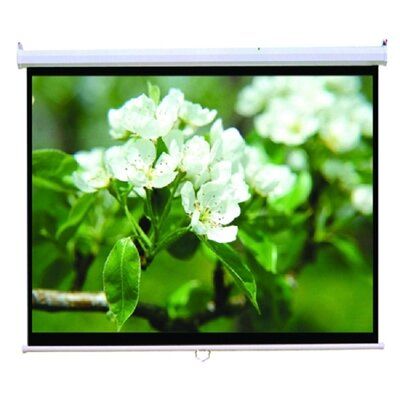 TygerClaw White Manual Projection Screen Size: 100 H x 100 W