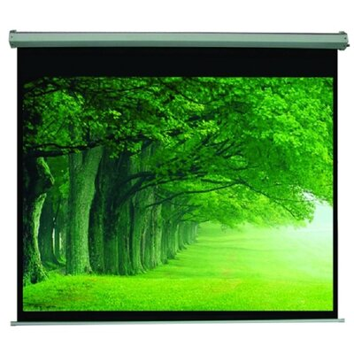 TygerClaw Black Electric Projection Screen Size: 100 H x 100 W