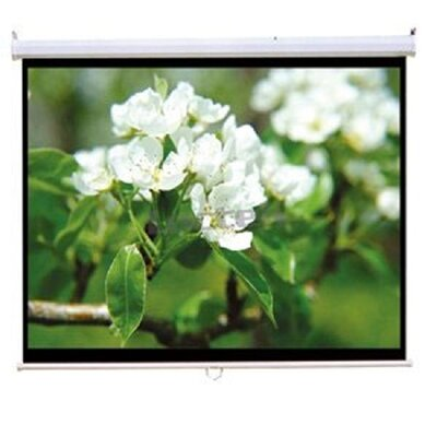 TygerClaw White Manual Projection Screen Size: 84 H x 84 W