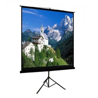 TygerClaw Black Portable Projection Screen Size: 84 H x 84 W