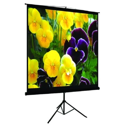 TygerClaw Black Portable Projection Screen Size: 100 H x 100 W
