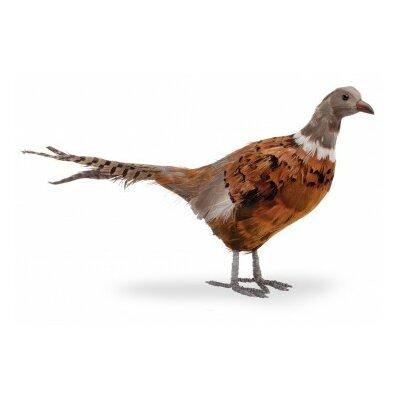Pheasant Figurine Size: Medium