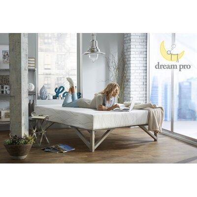 Dream Pro Restore 10