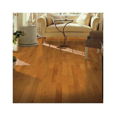 Yorkshire 3-1/4 Solid White Oak Hardwood Flooring in Canyon