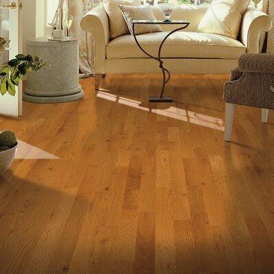 Yorkshire 3-1/4 Solid White Oak Hardwood Flooring in Auburn