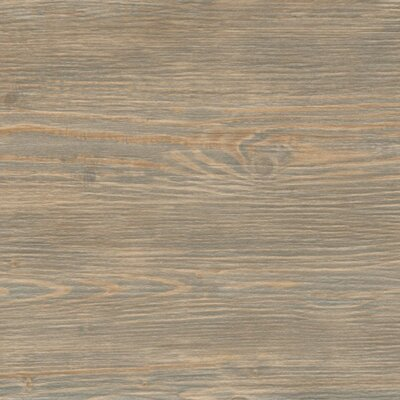 Alterna Reserve 8 x 16 Engineered Stone Wood Look/Field Tile in Reclaim Bay