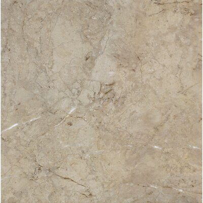 Alterna La Plata 12 x 12 x 4.064mm Luxury Vinyl Tile in Taupe/Gray