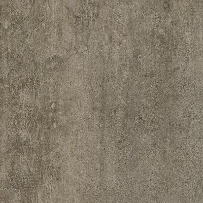 Alterna Enchanted Forest 8 x 16 x 4.064mm Luxury Vinyl Tile in Tender Twig