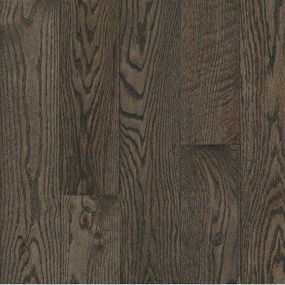 Turlington Signature Series 5 Engineered Northern Red Oak Hardwood Flooring in Silver
