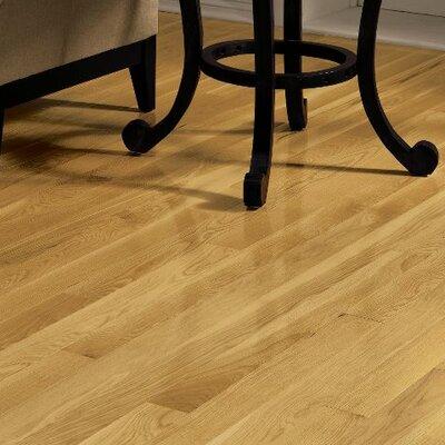 Dundee 3-1/4 Solid White Oak Hardwood Flooring in Seashell