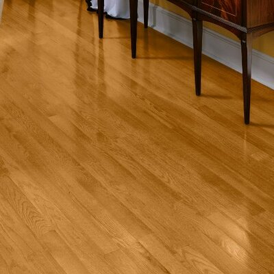 Fulton 3-1/4 Solid Red Oak Hardwood Flooring in Butterscotch