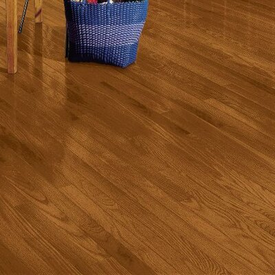 Plymouth 3.25 Solid Red Oak Hardwood Flooring in Amber
