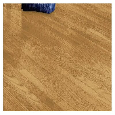 Plymouth 3.25 Solid Red Oak Hardwood Flooring in Blonde