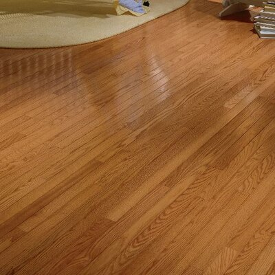 Plymouth 3.25 Solid Red Oak Hardwood Flooring in Honey