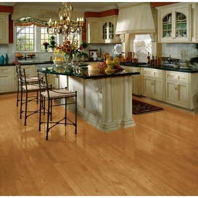 Bristol 2-1/4 Solid Red Oak Hardwood Flooring in Butterscotch