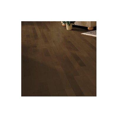 Random Width Solid Dark Maple Hardwood Flooring in Cappuccino