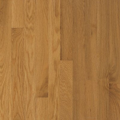 Waltham Strip 2-1/4 Solid Oak Hardwood Flooring in Cornsilk