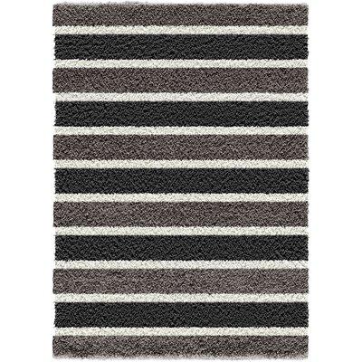 Silver/Black Area Rug
