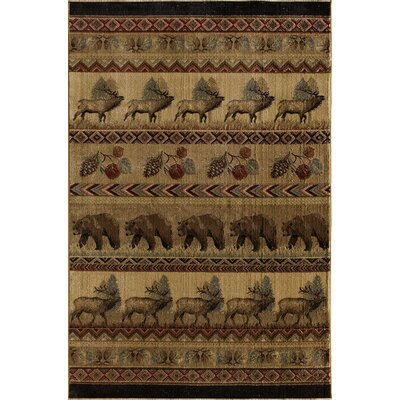 Lodge Sparta Avonaco Area Rug Rug Size: Rectangle 5 x 77