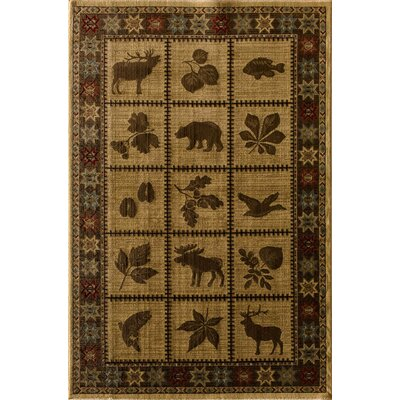 Lodge Sparta Kopin Area Rug Rug Size: Rectangle 33 x 53