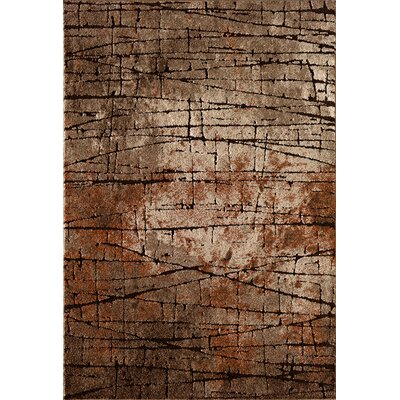 Claudine Brown  Area Rug Rug Size: 710 x 910