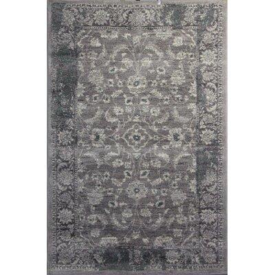 Doline Gray Area Rug Rug Size: 710 x 910