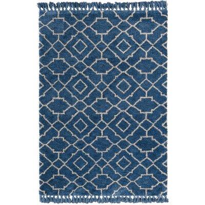 Ziaa Blue Area Rug Rug Size: 5 x 7