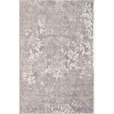 Marilla Gray Area Rug Rug Size: 710 x 910